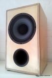 Lautsprecherbausatz 10CX-451 Coax Eminence & P.Audio