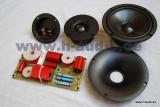 Lautsprecherbausatz Studiomonitor SM6-Pro + Frequenzweiche